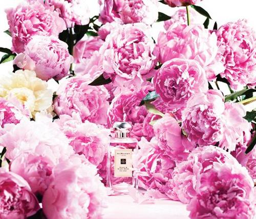 Jo Malone Peony&Blush Suede-perfume