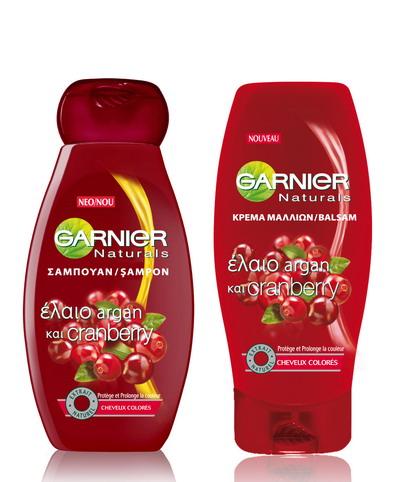 board gamme shamp V2
