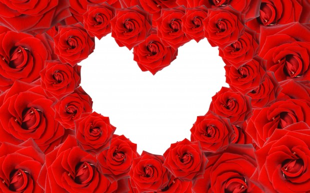 red_roses__love_heart-wide
