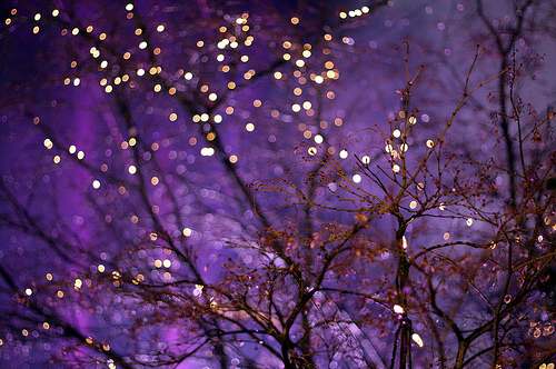 september-purple